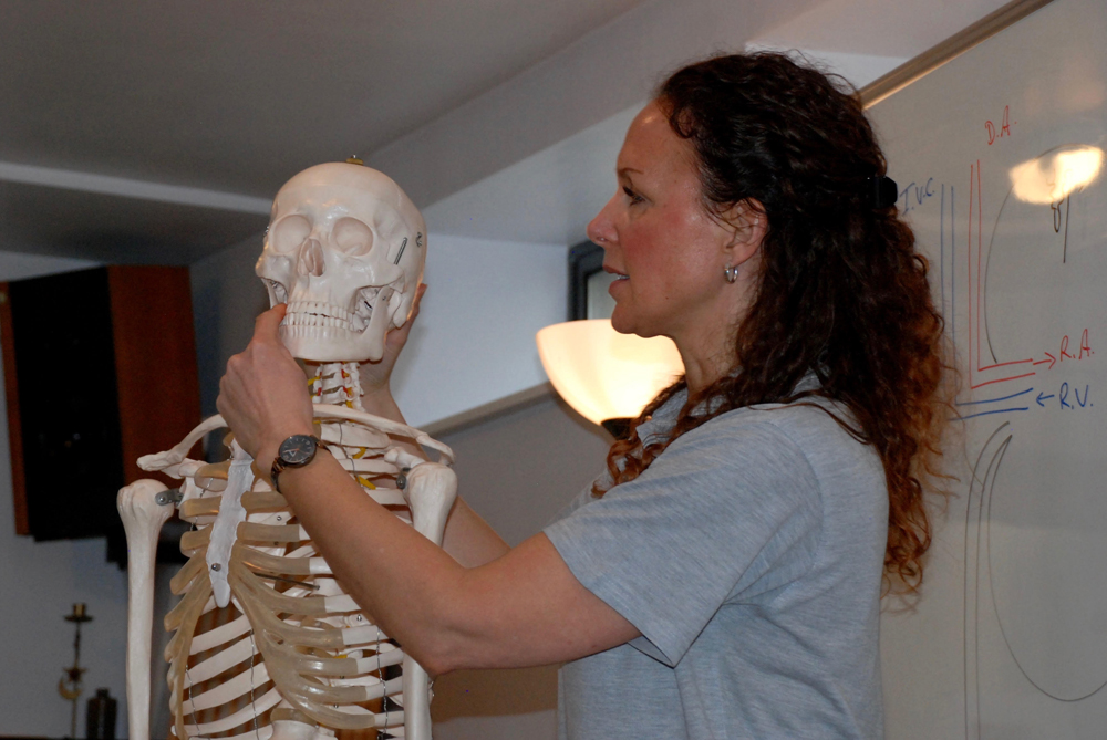 ITEC Anatomy and Physiology Course | The School of Natural Therapies ...